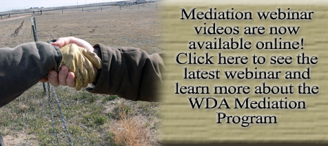 Click here to learn more about Mediation