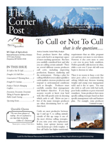 2013 Winter/Spring Cornerpost Newsletter